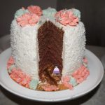 gâteau Coco - fraise - chocolat